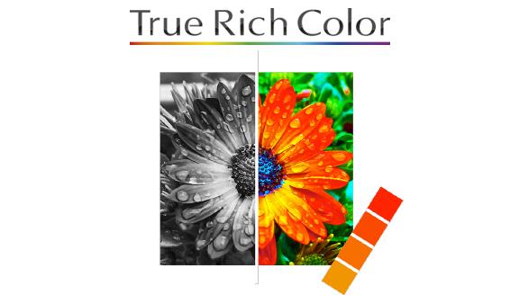 True Rich Color