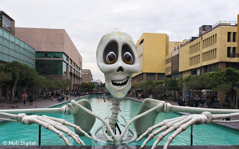 appm3d squelette