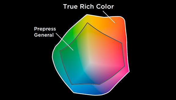Mise à niveau True Rich Color Roland TR2