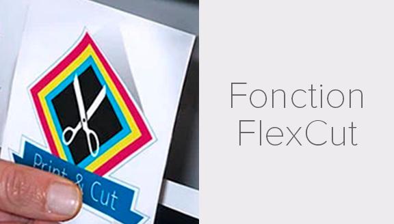 Fonction FlexCut : Summa